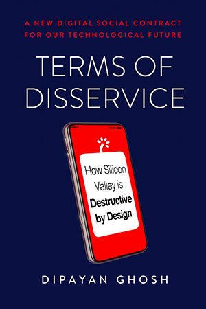 Cover of the book, Terms of Disservice